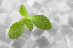 La stévia bio, 7 fois meilleur que le sucre