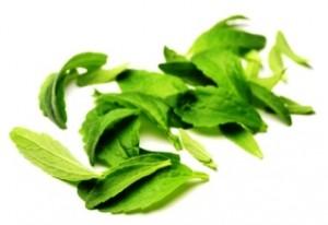 Feuilles de stevia biologique